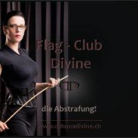 Auswahl_flag-club_abstrafung_mittig_