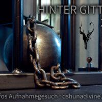 Auswahl_HinterGittern2021